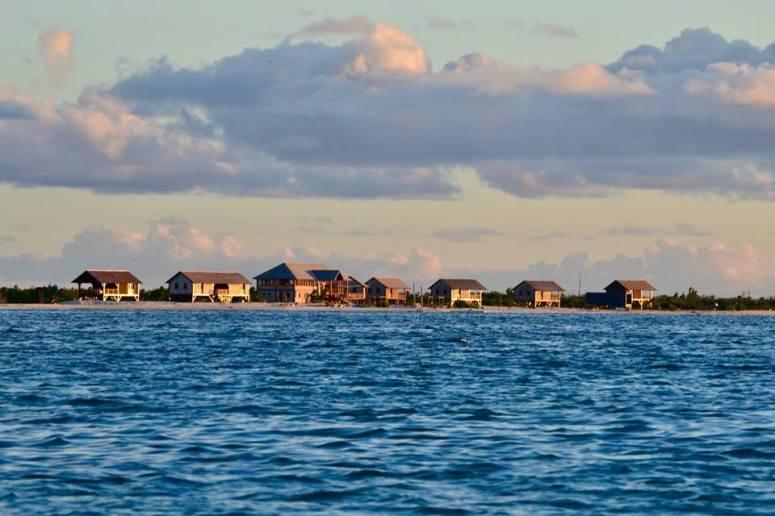 Barbuda Belle - 004
