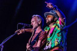 CNSJ - 2018 Shaggy Sting 002